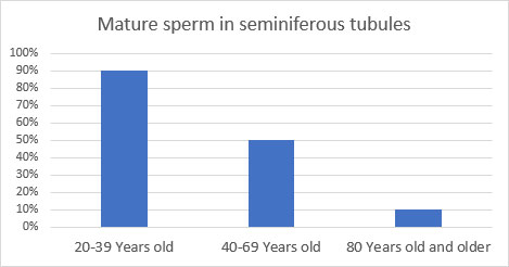 mature sperm in seminiferous tubules